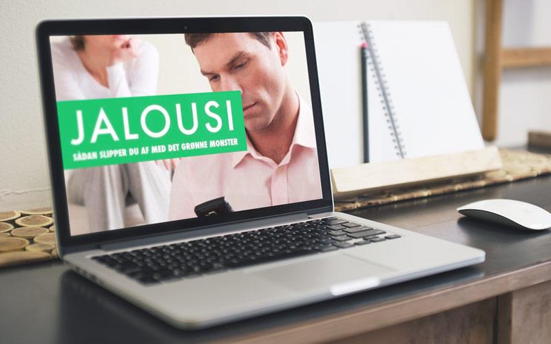 Jalousi kursus logo