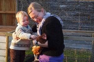 høns, høner, hønsegård, vi har fået høns, børn og høns