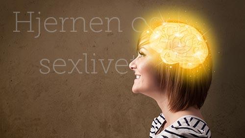 Hjernen og sexlivet